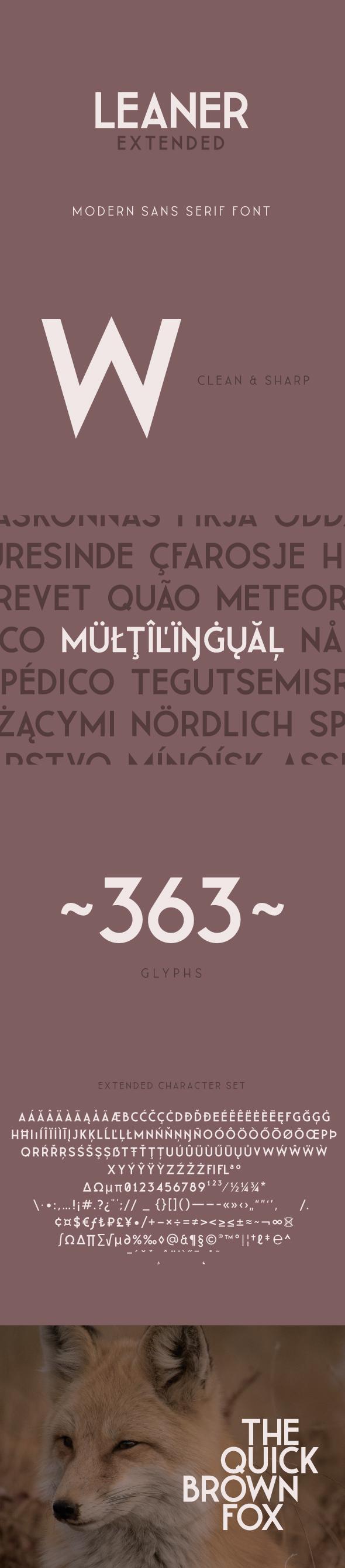 LEANER Extended -Bold - Sans-Serif Fonts