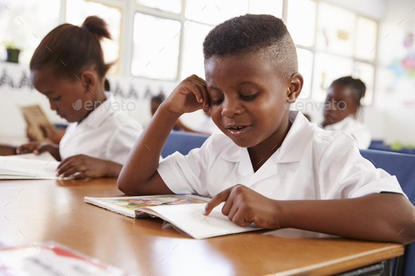 Elementary school boy reading a book at his desk in class - Stock Photo - Images