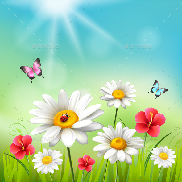 Daisy Realistic 3D Composition - Flowers & Plants Nature