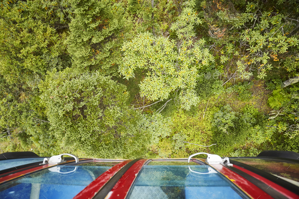 Looking down on a forest from cable car - Stock Photo - Images