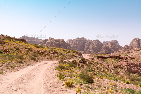 Rose City of Petra - Stock Photo - Images