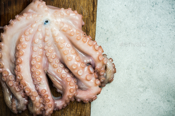 Whole fresh octopus on cutting board - Stock Photo - Images