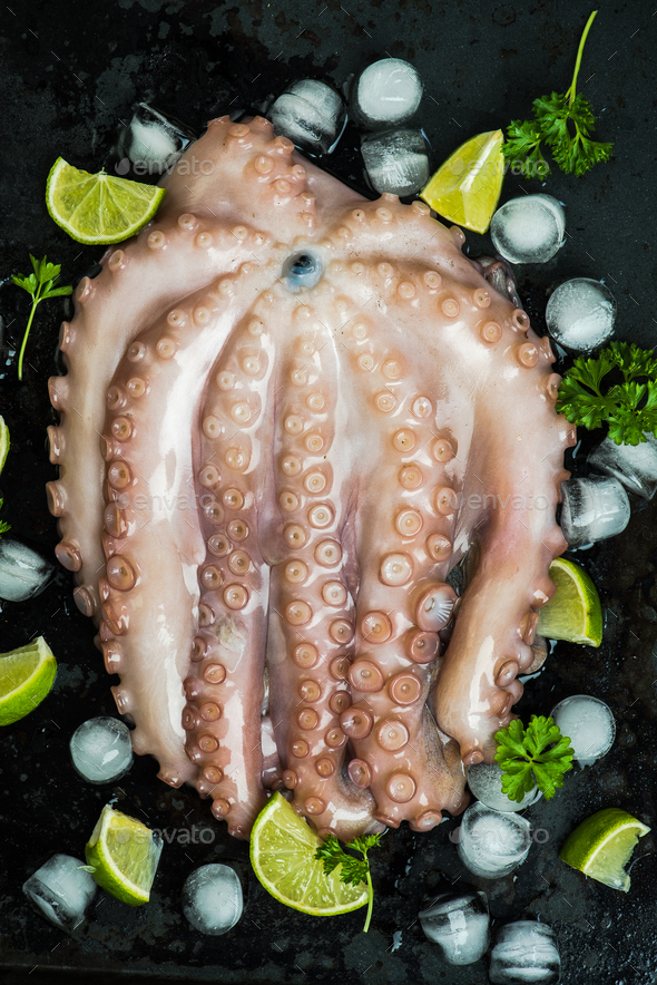Whole raw octopus seafood - Stock Photo - Images