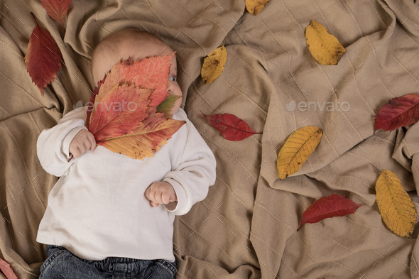 Portrait of baby boy. - Stock Photo - Images