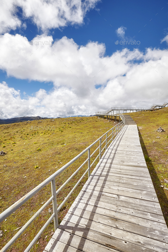 Wooden walkway in the Shika Snow Mountain area, China. - Stock Photo - Images