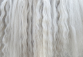 Long white mane of horse close up.  - PhotoDune Item for Sale
