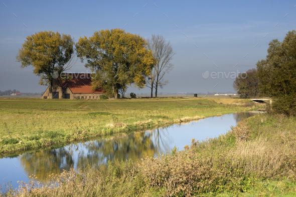 The Bevert creek - Stock Photo - Images