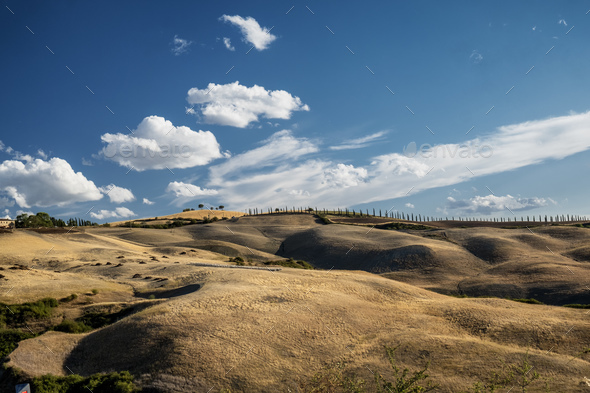 Summer landscape near Asciano - Stock Photo - Images