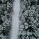 Aerial View of Winter Snowy Forest - VideoHive Item for Sale