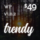 Trendy Pro - Responsive WordPress News Magazine Blog Theme - ThemeForest Item for Sale