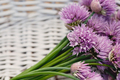 Chives in basket - PhotoDune Item for Sale