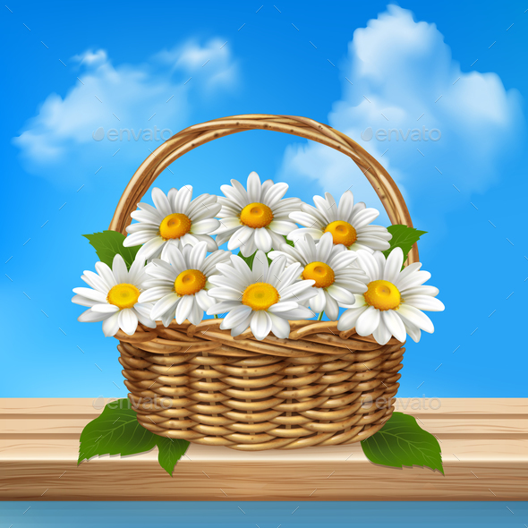 Daisy Realistic Colored Composition - Flowers & Plants Nature
