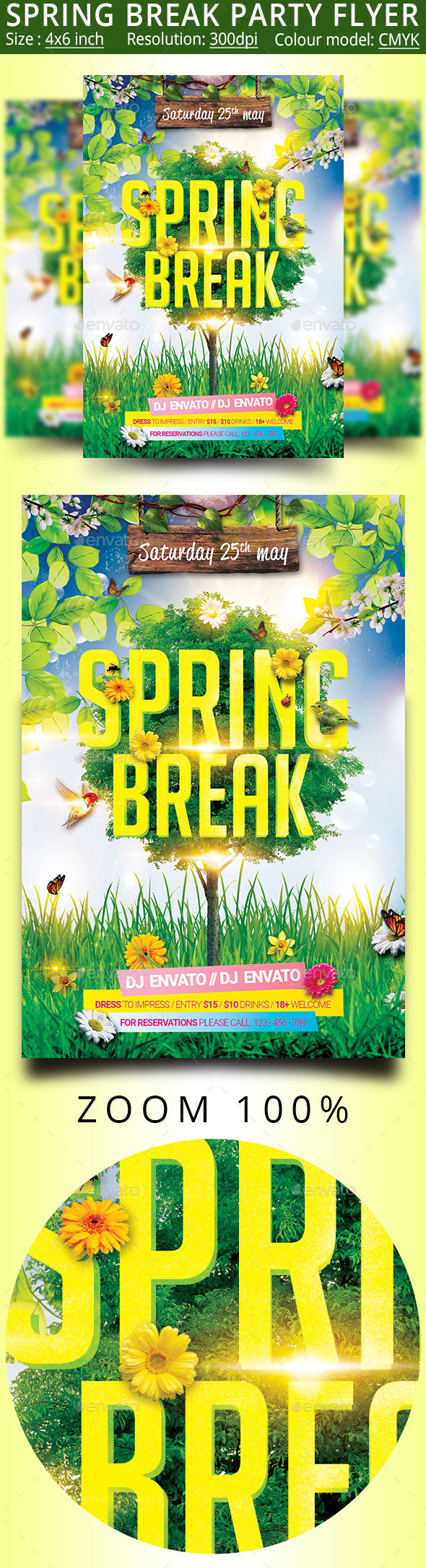 Spring Break Festival Party Flyer - Events Flyers