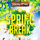 Spring Break Festival Party Flyer - GraphicRiver Item for Sale