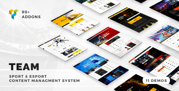 Team - Soccer, Football, Hockey, Basketball | eSport & Gaming | Sport Club News WordPress Theme - Entertainment WordPress