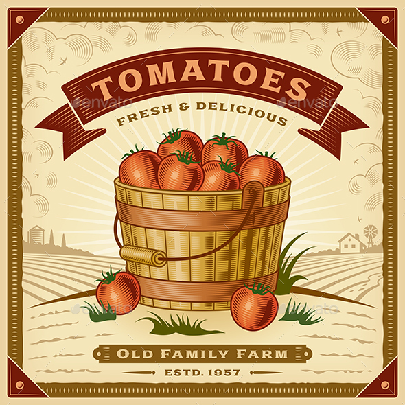 Retro Tomato Harvest Label With Landscape - Food Objects