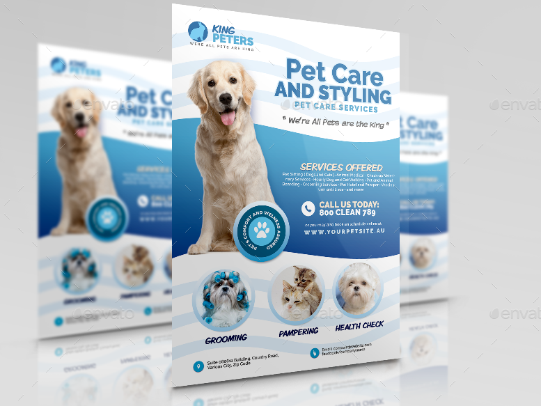 Pet Grooming And Care Service Flyer By Artchery Graphicriver