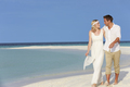Couple At Beautiful Beach Wedding - PhotoDune Item for Sale