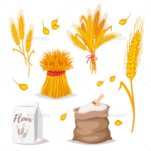 Wheat - Food Objects