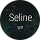 Seline - Creative Photography & Portfolio WordPress Theme - ThemeForest Item for Sale