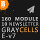 Graycells - Email v7 | 10 Multipurpose Responsive Template - ThemeForest Item for Sale
