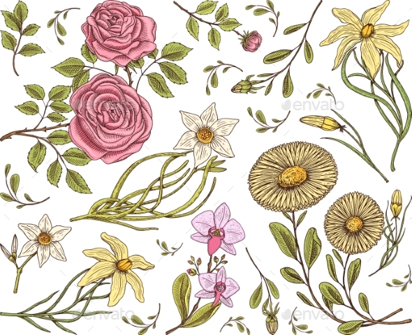 Seamless Pattern. Roses with Leaves and Buds - Flowers & Plants Nature