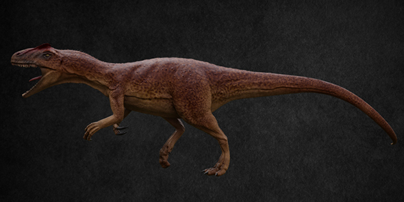 Allosaurus - 3DOcean Item for Sale