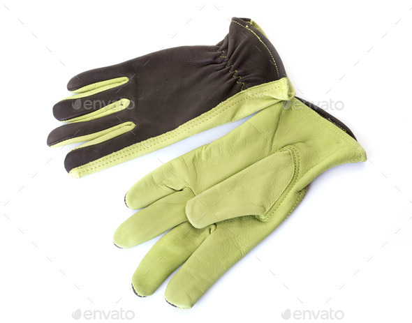 gardening gloves in studio - Stock Photo - Images