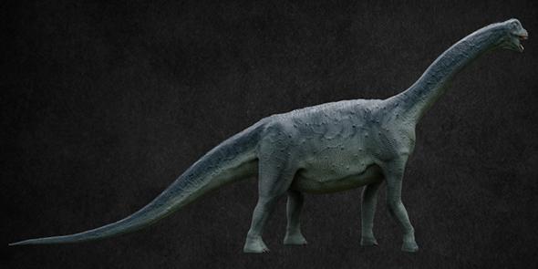 Camarasaurus - 3DOcean Item for Sale