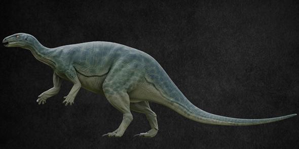 Camptosaurus - 3DOcean Item for Sale