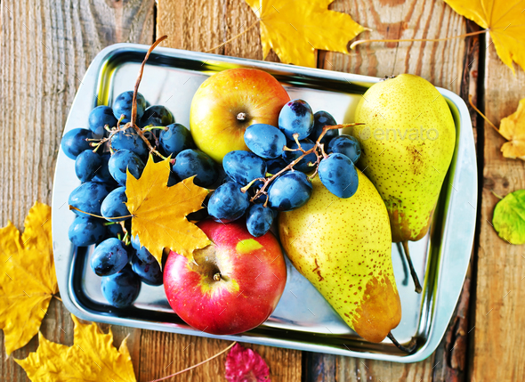 autumn harvest - Stock Photo - Images