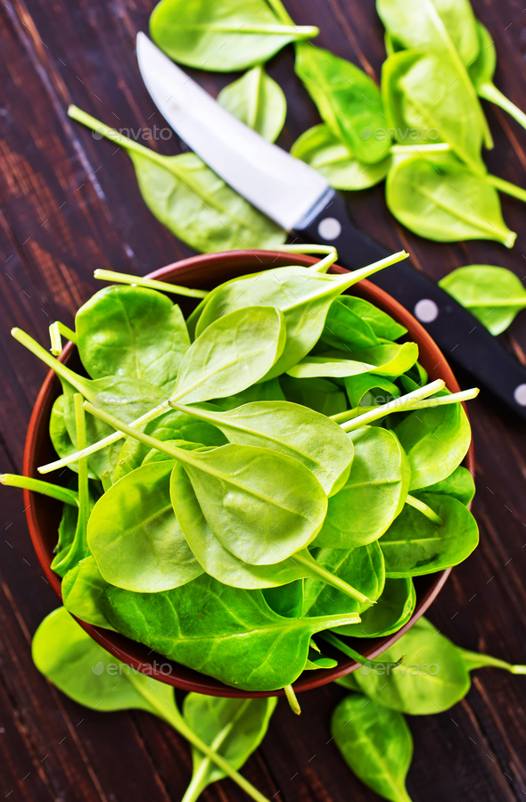 fresh spinach - Stock Photo - Images