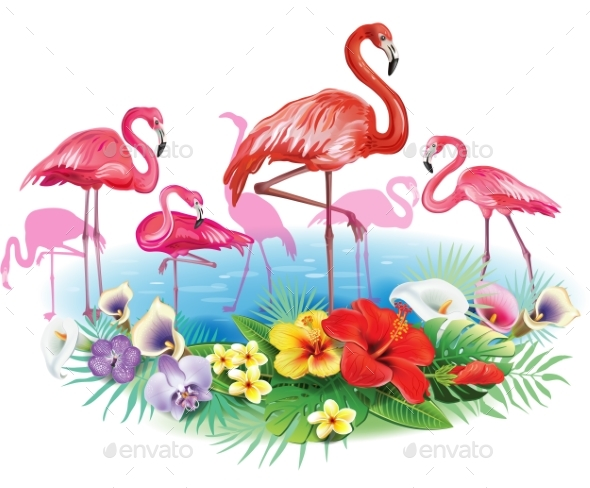 Flamingoes and Arrangement From Tropical Flowers - Flowers & Plants Nature