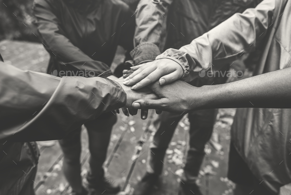 Team building outdoor in the forest - Stock Photo - Images