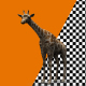 3d Giraffe - VideoHive Item for Sale
