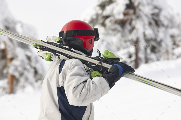 Skier carrying skis on a snowy forest landscape. Winter sport - Stock Photo - Images