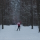 Man Skiing Alone in Nature - VideoHive Item for Sale