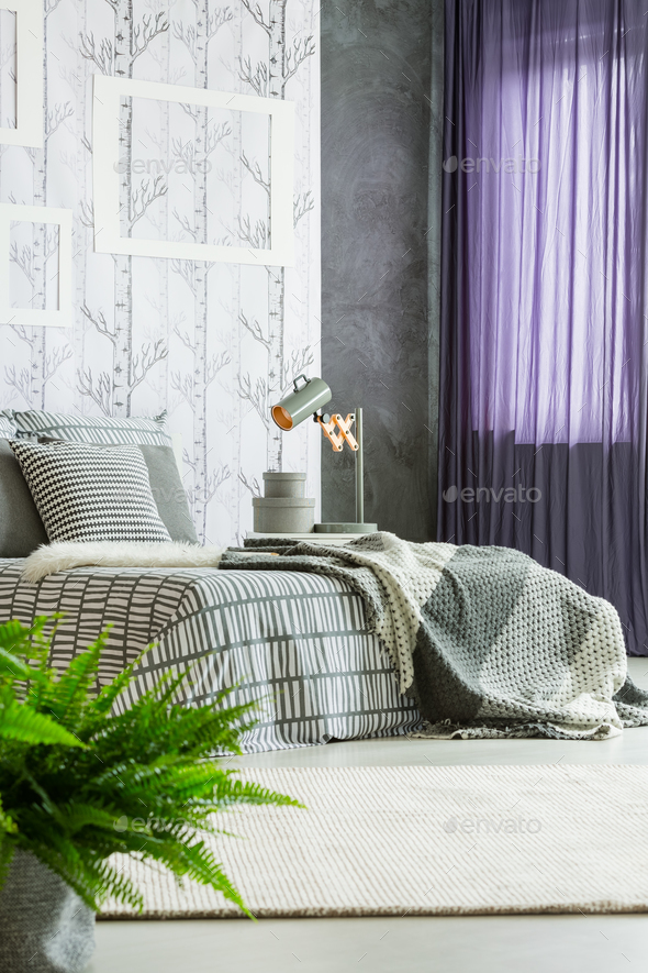 Purple drapes in modern bedroom - Stock Photo - Images