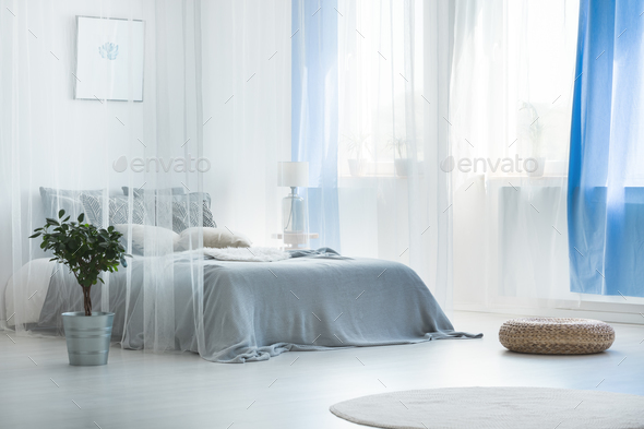 Decorative canopy in calm bedroom - Stock Photo - Images