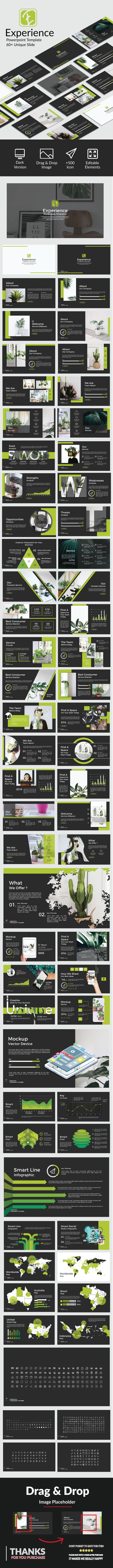 Experience Powerpoint - PowerPoint Templates Presentation Templates