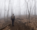 Teenager hiking through foggy forest with bare trees. - PhotoDune Item for Sale