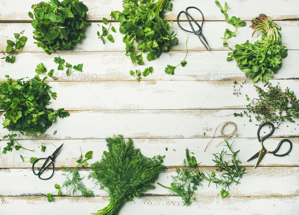 Various fresh green kitchen herbs over wooden background, copy space - Stock Photo - Images