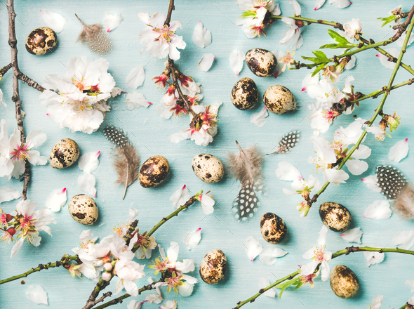 Easter background with eggs and Spring almond blossom flowers - Stock Photo - Images