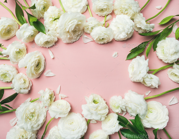 Saint Valentines Day frame or background with ranunculus, copy space - Stock Photo - Images