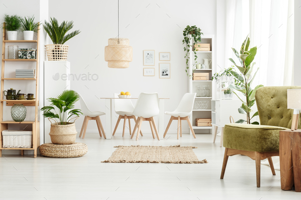 Green armchair in multifunctional room - Stock Photo - Images