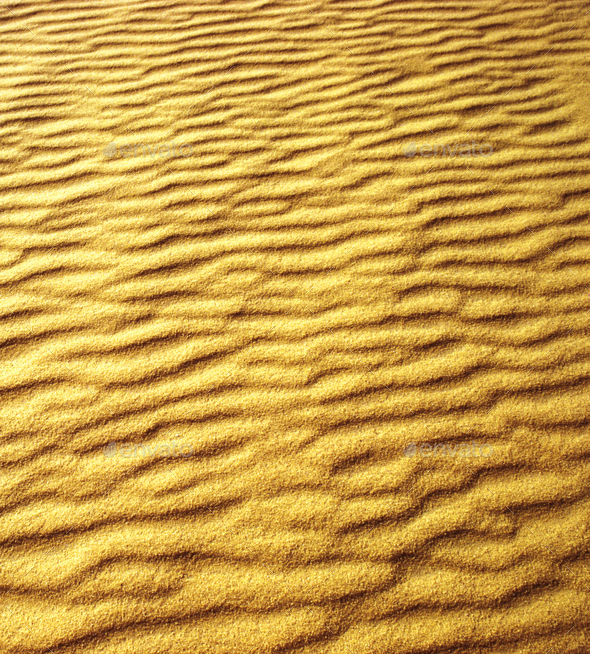 Sand dunes on the beach - Stock Photo - Images