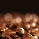 Coffee Coffee Beans Coffee Beans of Seeds of Coffee Beautiful Seeds of Coffee Rotating an - VideoHive Item for Sale
