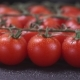 Ripe Cherry Tomatoes  on Black Background - VideoHive Item for Sale