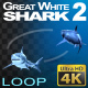 Shark 2 - VideoHive Item for Sale
