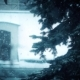Christmas Tree in Heavy Snowfall in Winter - VideoHive Item for Sale